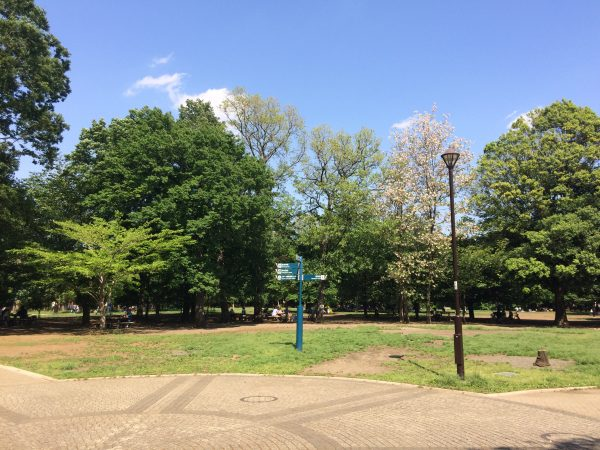 Graffias井の頭公園Ⅱ